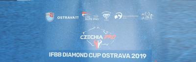 2019 Ostrava Diamond cup